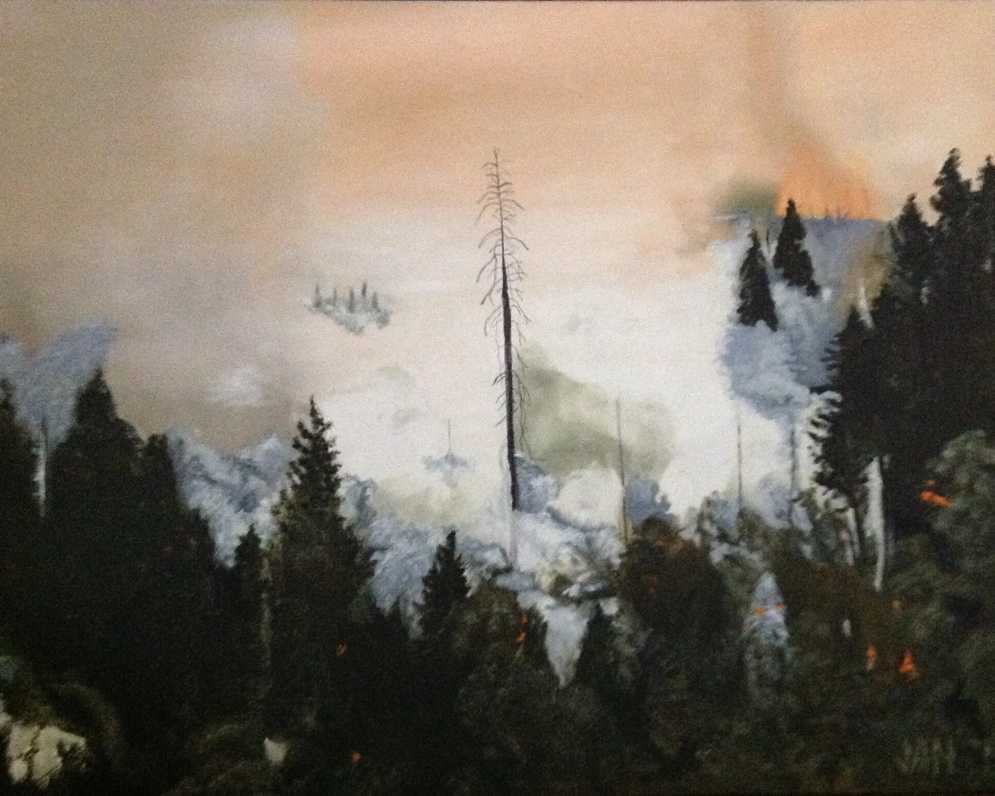 Jan Wall - Rim Fire, Yosemite