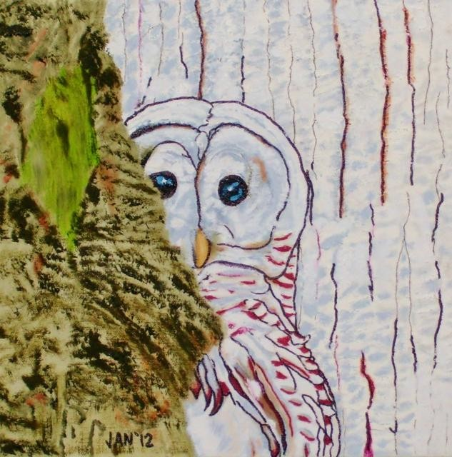 Jan Wall - Owl