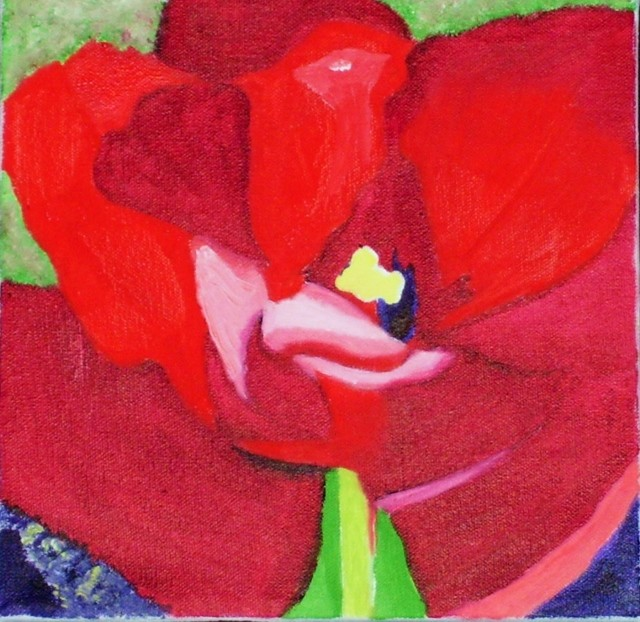 Jan Wall - Tulip 2
