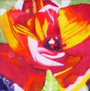Jan Wall - Tulip 3